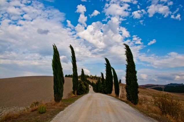 Crete Senesi in a windy day. Italy 2010