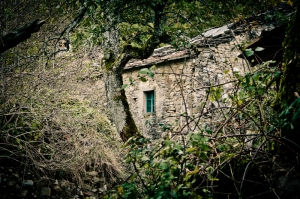 Old stone house in the wood, Apennine - Italy