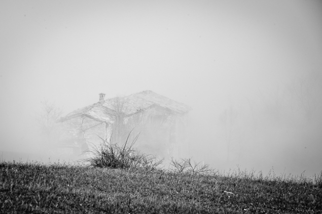 In the fog (waiting for Springtime) - Apennines (Italy)