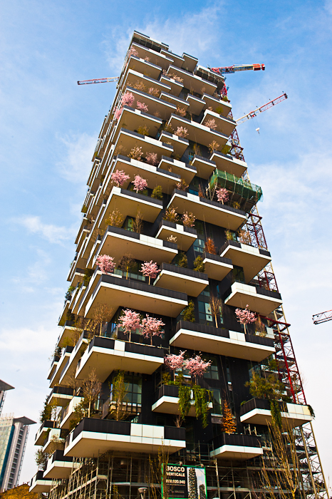 Vertical wood, Milan - Italy
